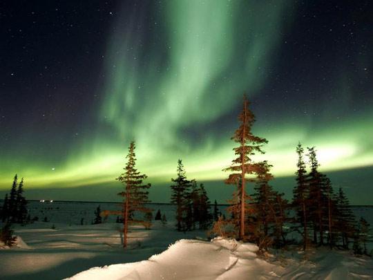 Northern Lights Churchill1